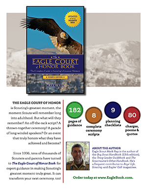 Eagle Court of Honor Book Infographic